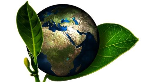 ISO 14001 milieu