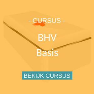 Cursus BHV basis