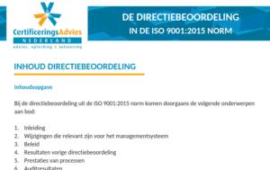 thumb-directiebeoordeling-voorbeeld